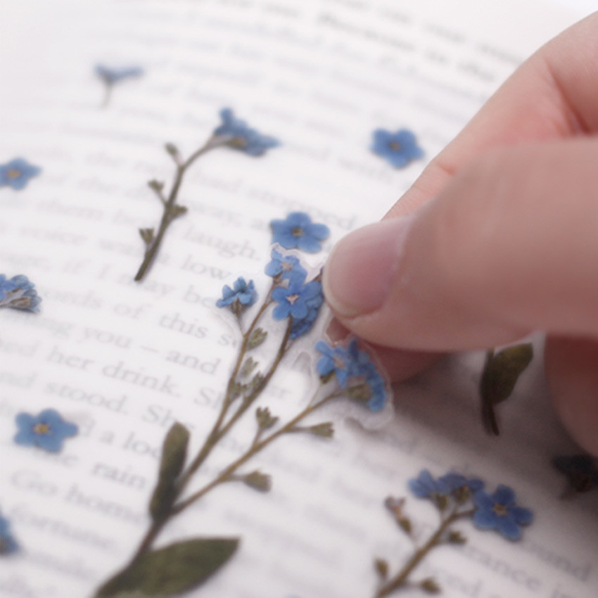 Usage example - Forget me not press flower deco sticker