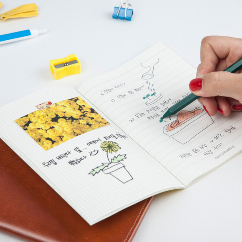 Example of use - Ggo deung o small grid and lined notebook