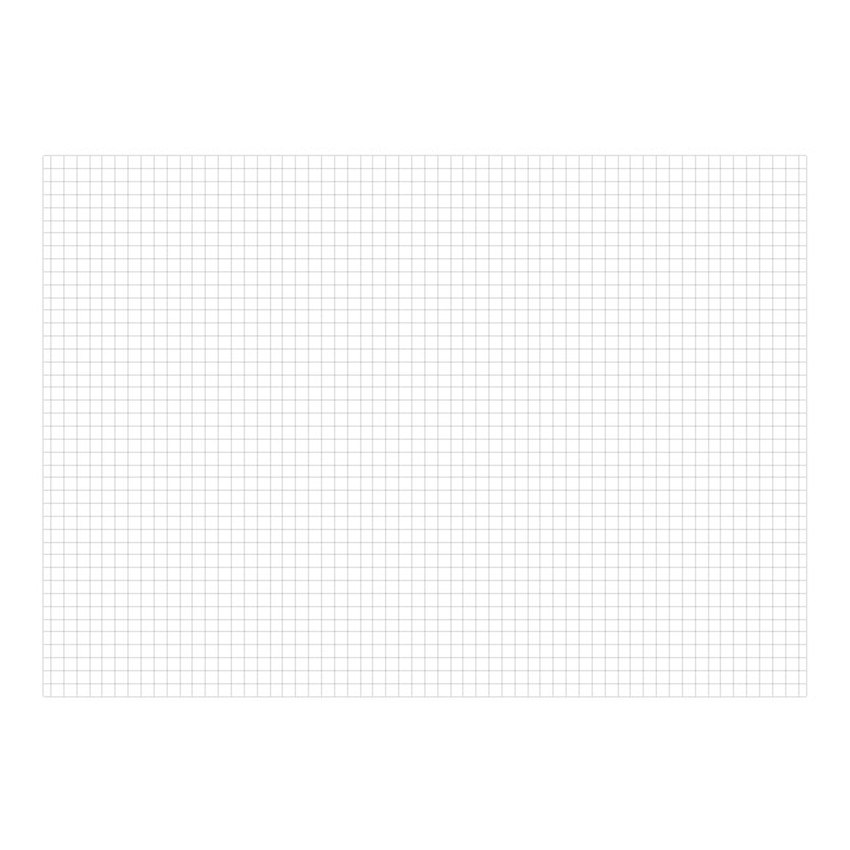 Grid - O-CHECK Spring come medium school notebook