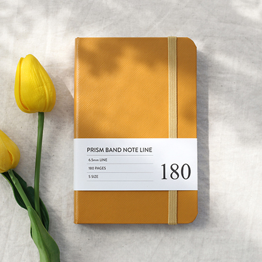 Indigo Prism 180 pages small lined notebook with elastic band