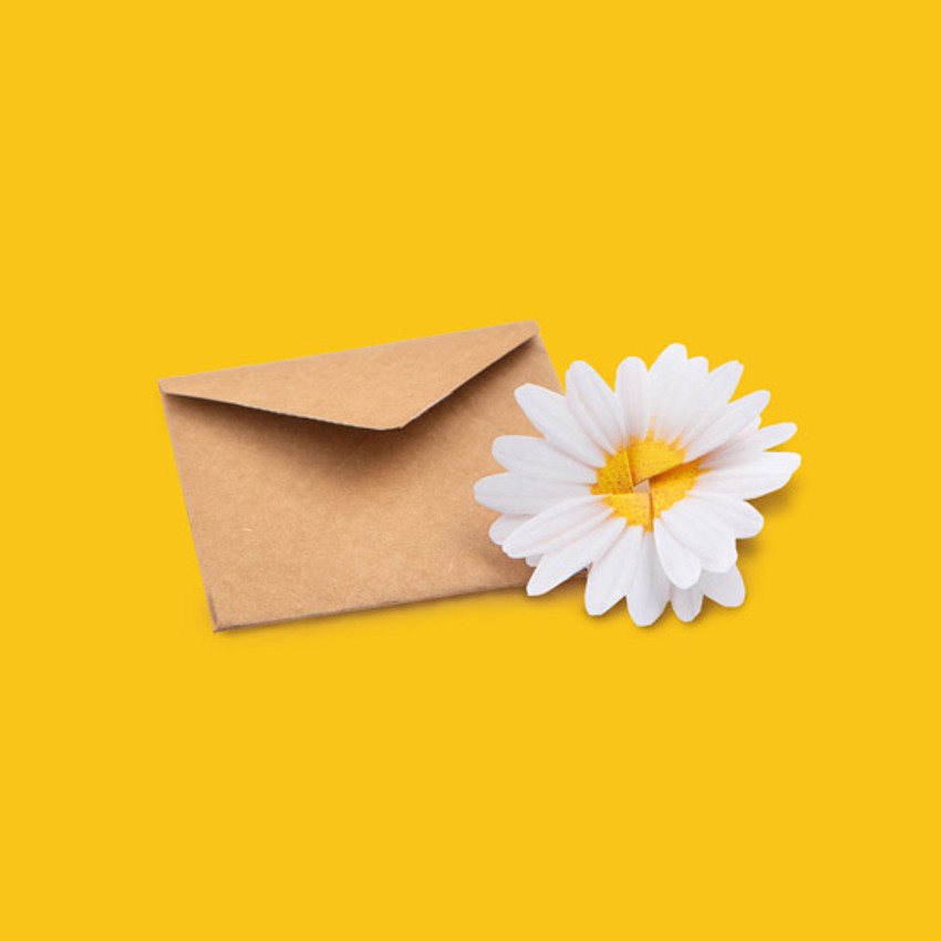 Envelope - ABJECTION Daisy cards and envelope set