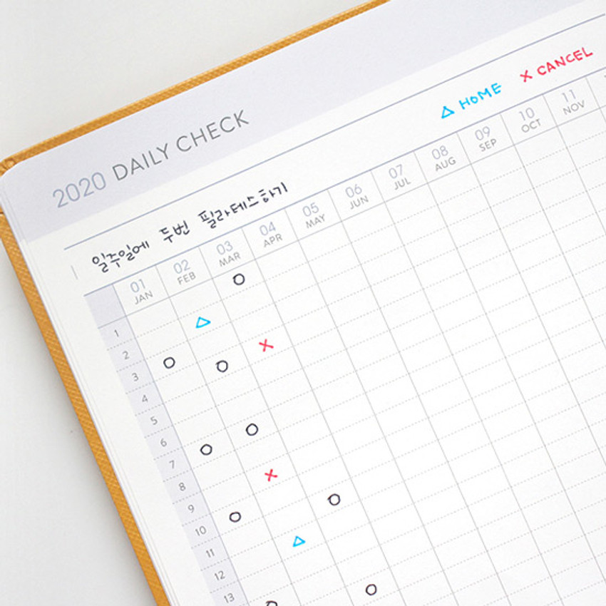 Daily check - Indigo 2020 Prism dated monthly planner notebook