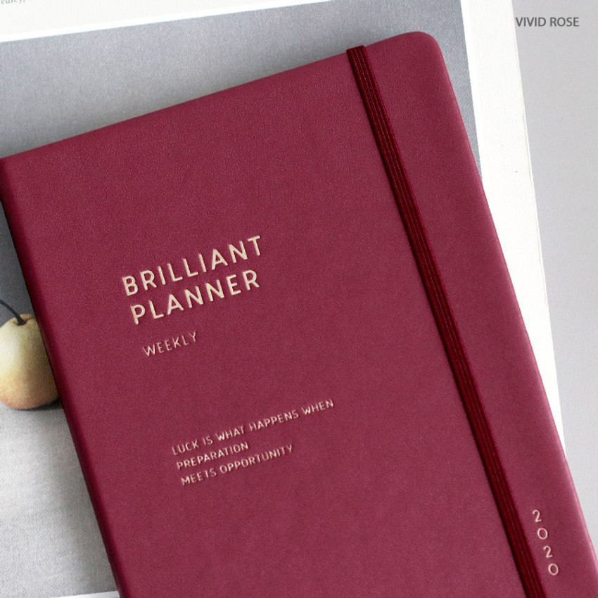 Vivid rose - ICONIC 2020 Brilliant dated weekly planner scheduler