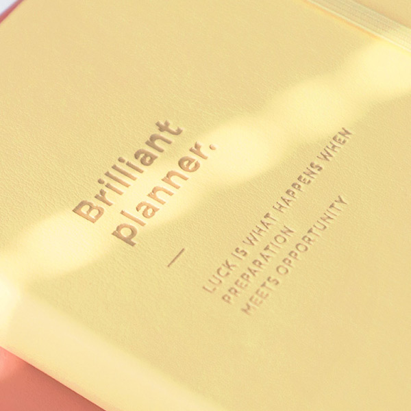 PU cover - ICONIC 2021 Brilliant dated daily diary planner
