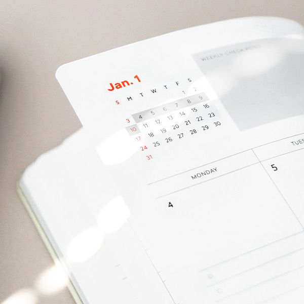 100gsm paper - ICONIC 2021 Brilliant dated daily diary planner