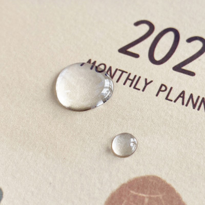 PVC cover - O-CHECK 2021 Spring come dated monthly planner scheduler