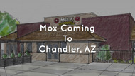 Mox Is Coming To Arizona!