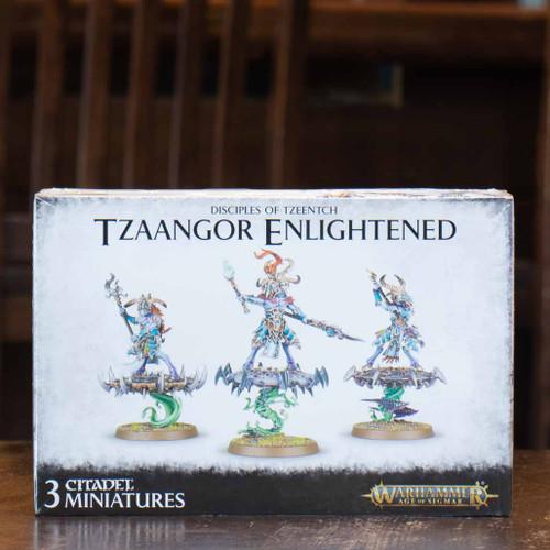 Warhammer 40K/AoS - Tzaangor Enlightened