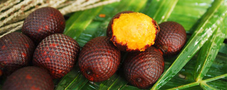 Rosemira Ingredients - Buriti Oil