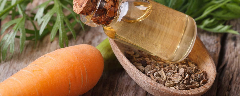 Rosemira Ingredients - Carrot Seed & Root Essential Oil