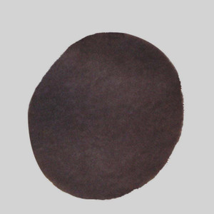 P199352-016-147 (Pkg. Of 6) Prefilter, In-Cover for E 100 thru E 500 (8)
