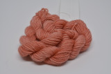 Coral Minis