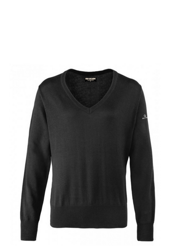 genuine 60% discount latest fashion Ladies 'Panmure' V-Neck Golf Jumper. 3 Colour XS-5XL .Free Personalisation  & UK Delivery