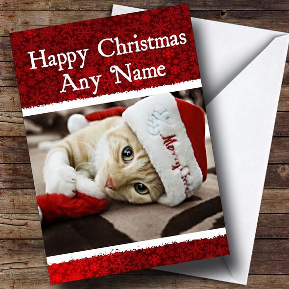 Beautiful Kitten Christmas Card Personalised
