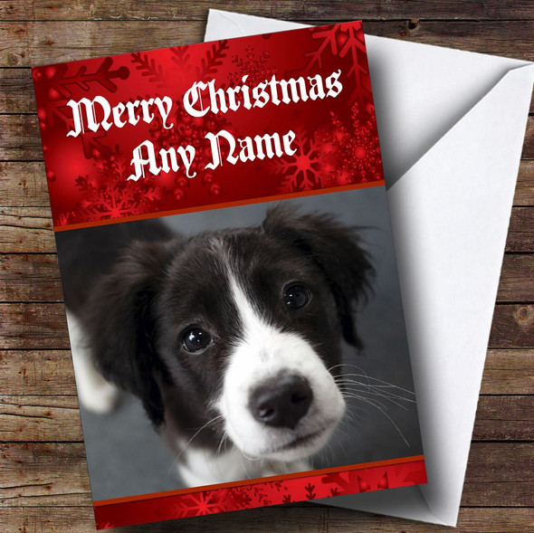 Border Collie Puppy Dog Personalised Christmas Card