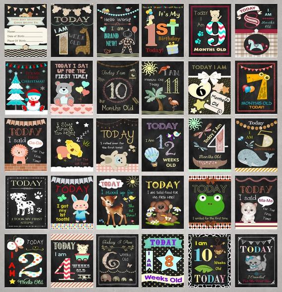 Chalk Style Neutral Baby Milestone Cards