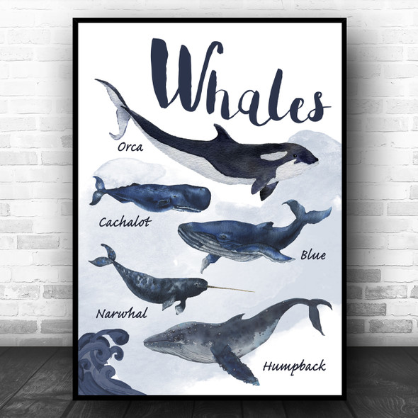 Types Of Whale Children's Nursery Kids Wall Art Print