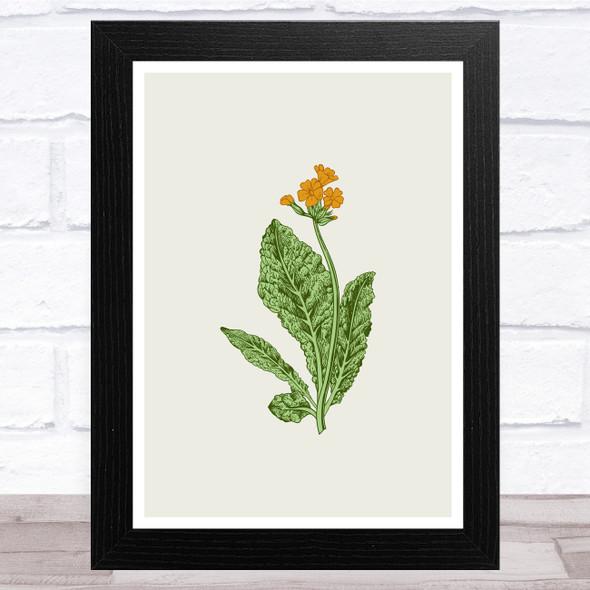 Herbs And Wild Flowers Design 7 Wall Art Print