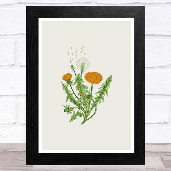 Herbs And Wild Flowers Design 8 Wall Art Print