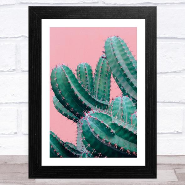 Cactus On Pink Wall Art Print