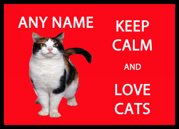Keep Calm And Love Cats Personalised Computer Mousemat