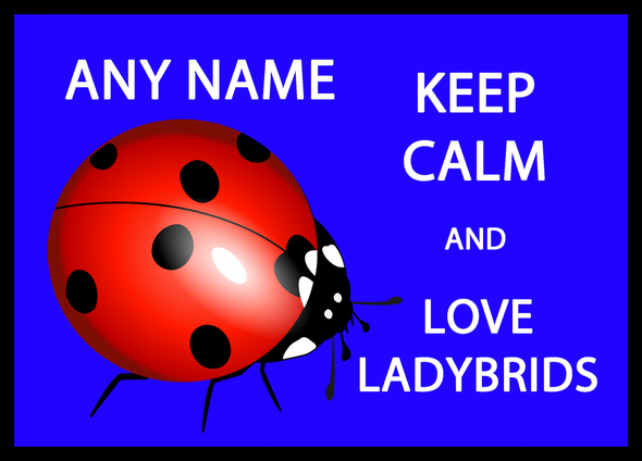 Keep Calm And Love Ladybirds Personalised Computer Mousemat