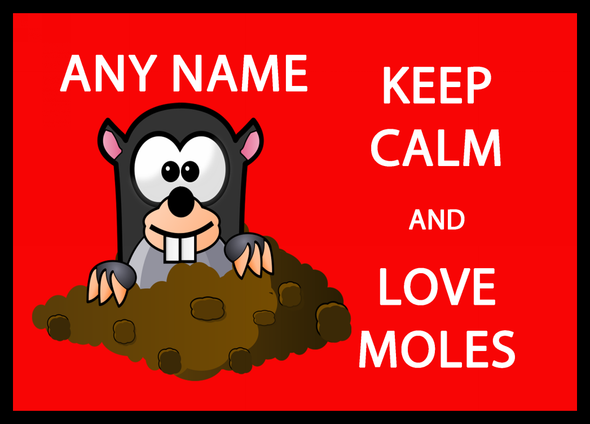 Keep Calm And Love Moles Personalised Computer Mousemat