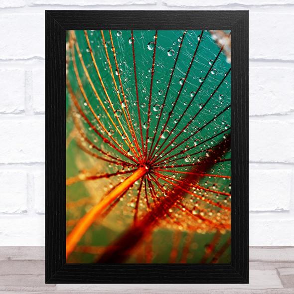 Dandelion Wish With Water Design 1 Home Wall Art Print