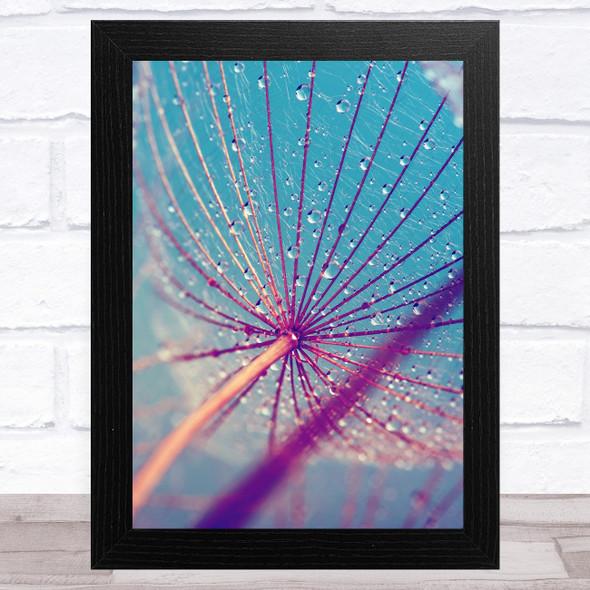 Dandelion Wish With Water Design 2 Home Wall Art Print