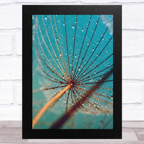 Dandelion Wish With Water Design 3 Home Wall Art Print