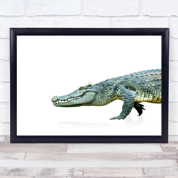 Crocodile Simple Animal Wall Art Print