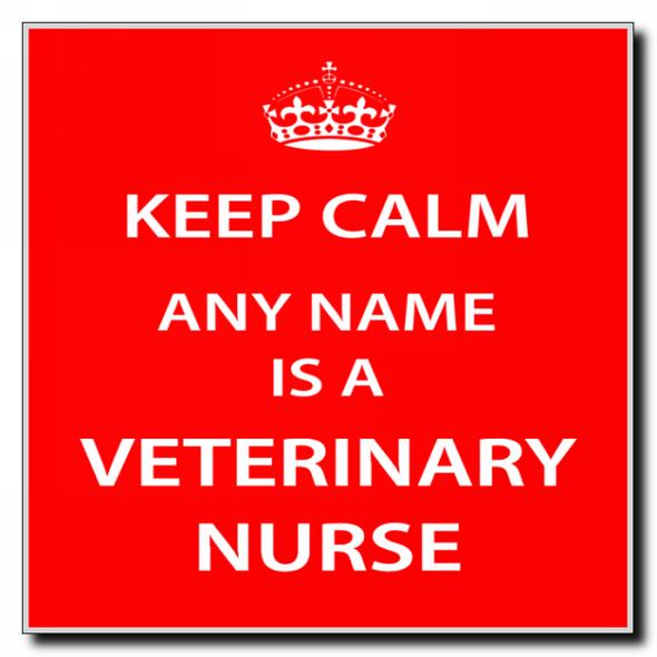 Veterinary Nurse Personalised Keep Calm Coaster