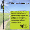 Brazos Trekking Poles - Matching Pair with Anti-Shock Tech and Interchangeable Tip - GREEN