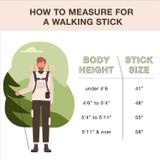 Hitchhiker Twisted Oak Walking Stick
