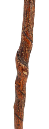 Vine Twisted Walking Stick Image Middle
