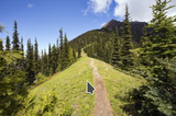 Here's How Avid Hikers With Trekking Poles Can Confidently Explore Trails Less Traveled