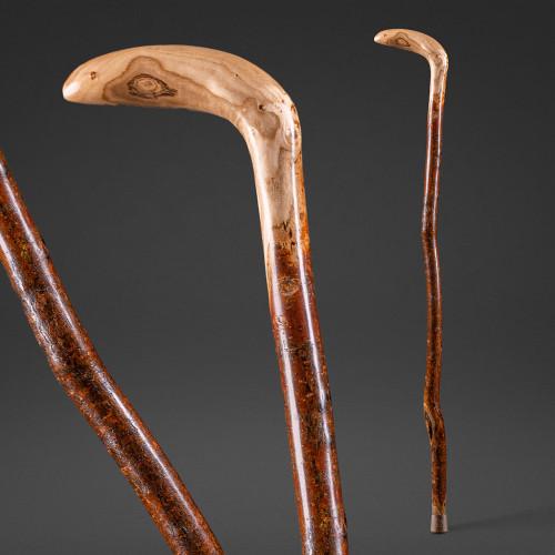 Sapling Root Cane