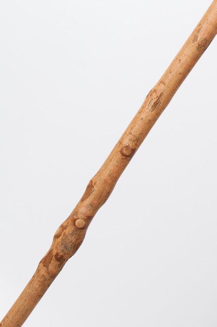 Free Form Ash Walking Stick