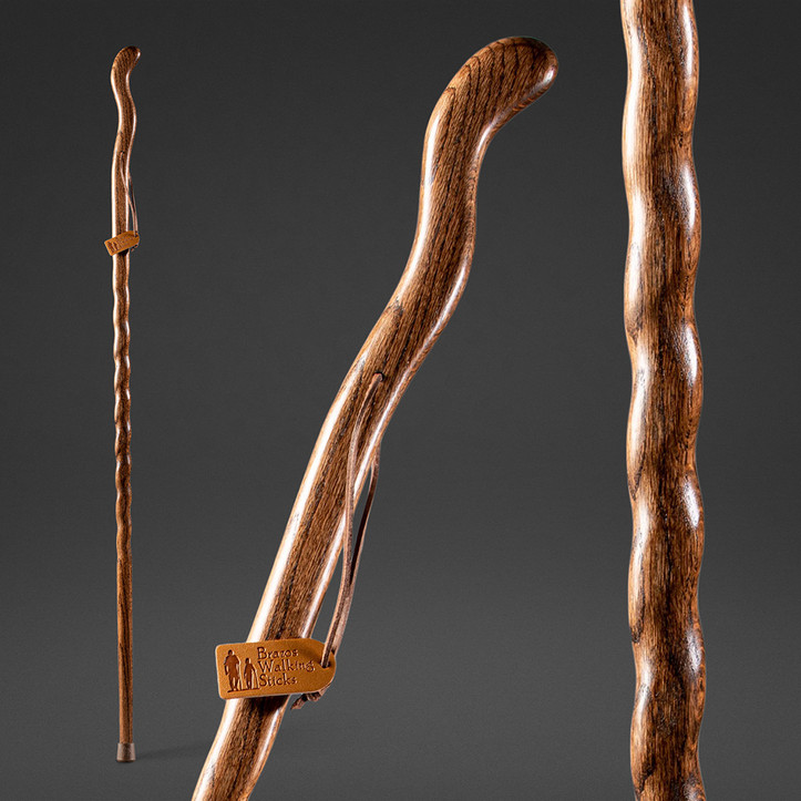 FitnessWalker Walking Stick