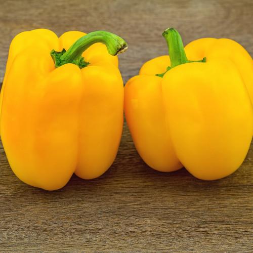 Golden California Wonder Pepper