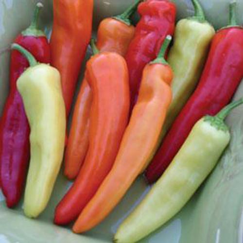 Hungarian Hot Wax Pepper