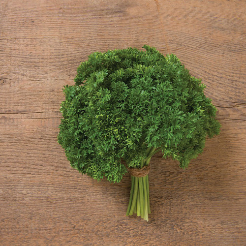 Darki Parsley