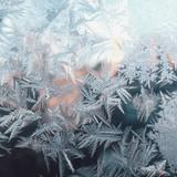 Big frost brews big trouble in Brazil