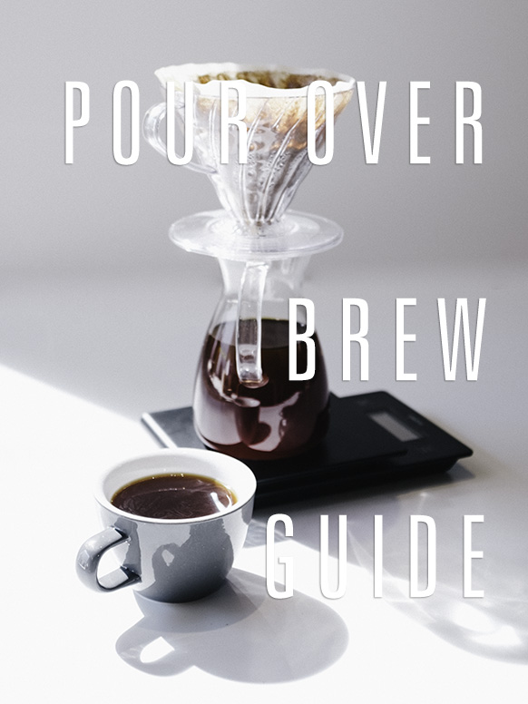 A v60 filter coffee pour over