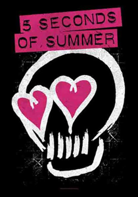5 Seconds Of Summer Poster Flag Skull Love Tapestry