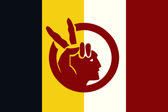 American Indian Movement Flag 3x5 Economical