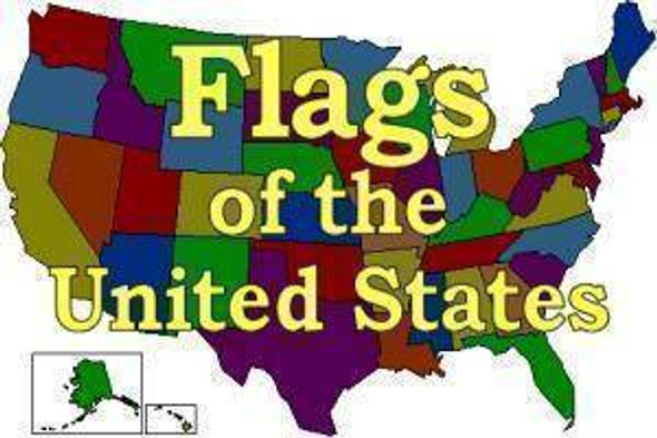 50 US States set 3 X 5 ft Standard Flags