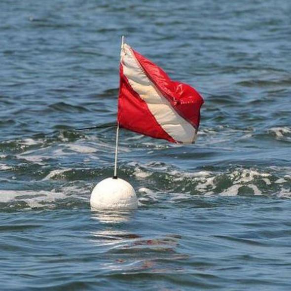 Diver Down Flag 100D - Economical