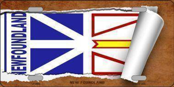 Newfoundland Flag License Plate