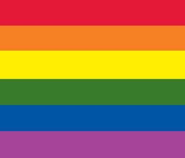Rainbow Car Flag - Gay Pride Flag - Window Clip